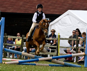 pony-camp15